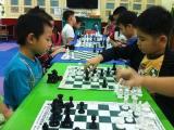 Lịch học cờ vua cơ bản