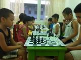 Cách chơi cờ vua cơ bản