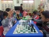 Người chơi cờ vua cần học cách chống đỡ nước chiếu như thế nào?