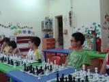 Học chơi cờ vua với tuyệt chiêu đòn chiếu mở