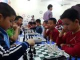 Chiến lược chơi cờ vua: Cuộc chiến Tượng khác màu trung cuộc