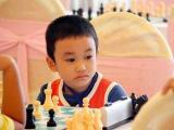 Tổng hợp một số thế chiếu hết cơ bản và kỹ năng tính toán trong cờ vua