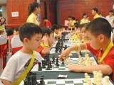 Giải cờ vua Xuân Hè Cờ Thông Minh 2016
